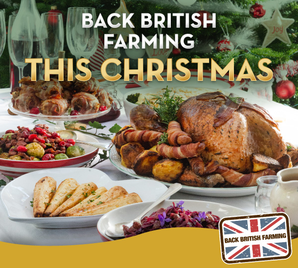 Celebrate with British this Christmas